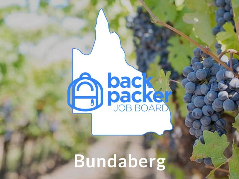 Jobs in Bundaberg