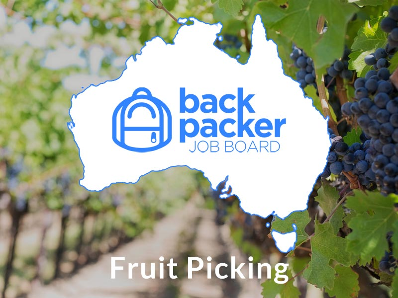 Fruit Picking Jobs, Australia