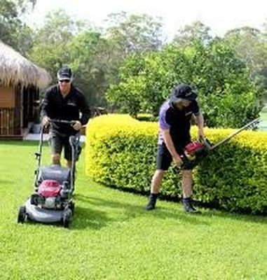 Experienced Lawn Mowing Proffesional .
