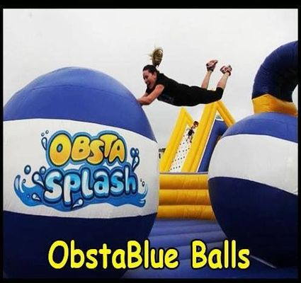 Volunteer For Inflatable Obstacle Course