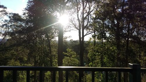 Au Pair Wanted -july Start -  Blue Mountains/sydney