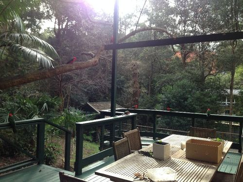Live-in Nanny /  Au Pair On Sydney's Beautiful North Shore - June-august