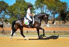 Rider/stablehand