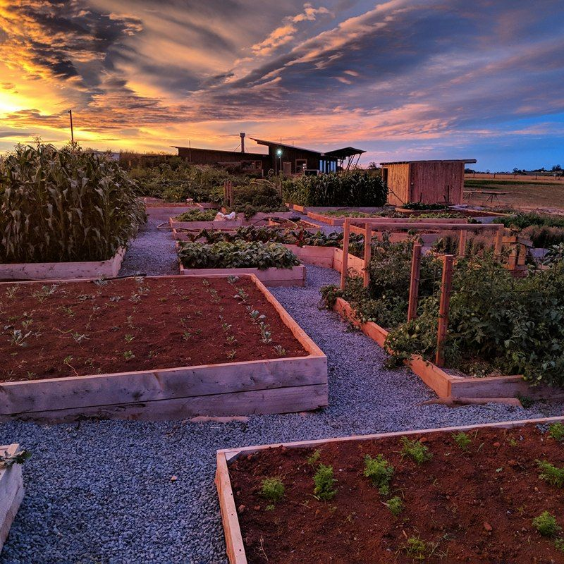 Farm Builder And Paddock To Plate Chef