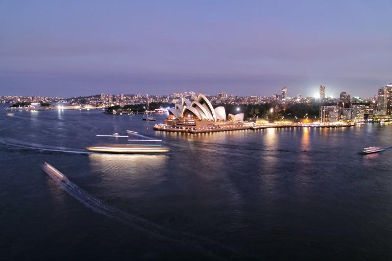 Hourly Paid Animal Charity Ambassador - Sydney