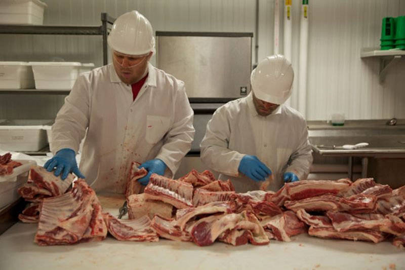 Meat Process Worker - Sa