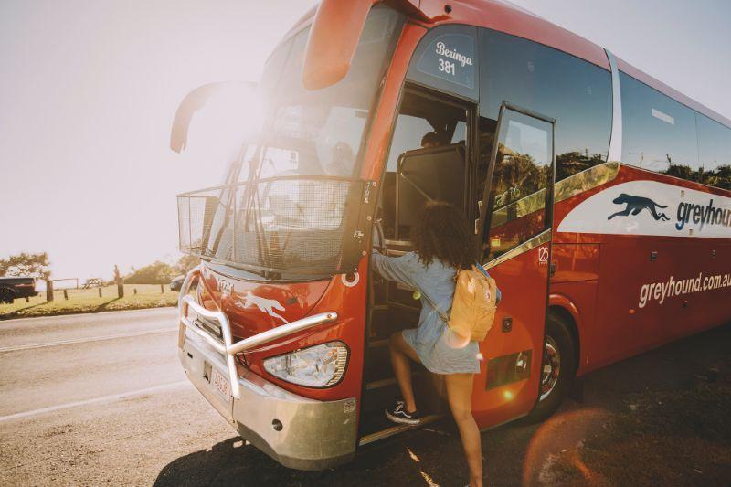 Backpacker Travel Sales Specalist