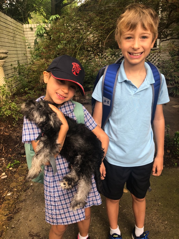 Live In Au Pair From April/may