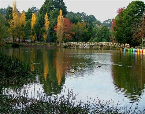 Au Pair Wanted In Leafy Melbourne Suburb Overlooking Mt Dandenong Ranges!