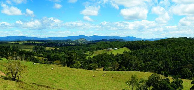 Farm, Receptionist And Housekeeping Near Cairns (atherton Area)