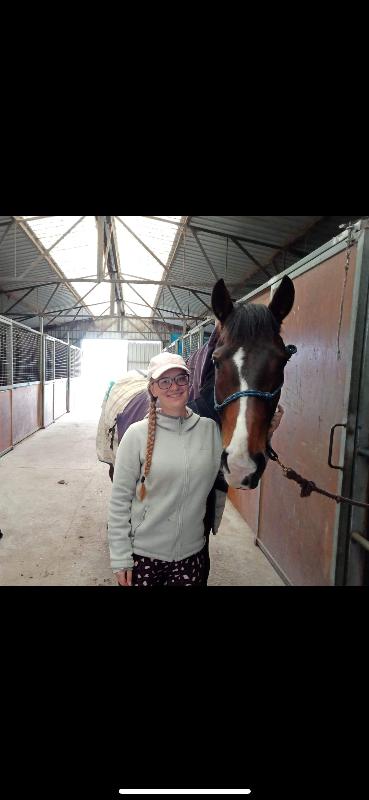 Horse/farm Help