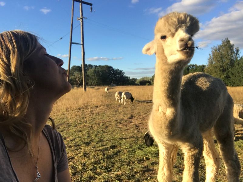 Au Pair To Join Our Family On Semi Rural Property, 35 Minutes From Canberra Cbd
