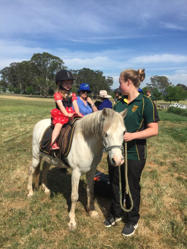 Horse Farm And Riding School Allrounder