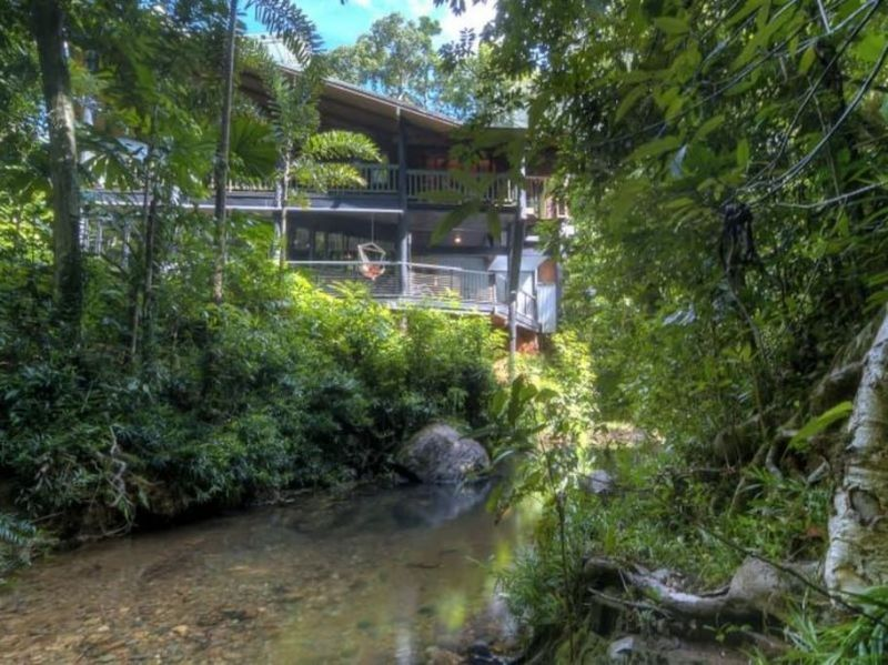 Work For Food And Accommodation In The Daintree Rainforest