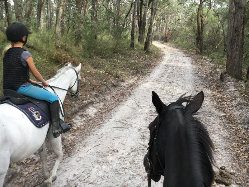 Volunteer Nanny/au Pair For Girls 9 & 13 On Horse Farm, 1 Hour From Melbourne
