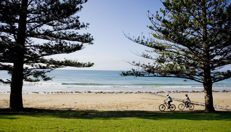 Event Volunteer - Visit The Limestone Coast And The Great Ocean Road!