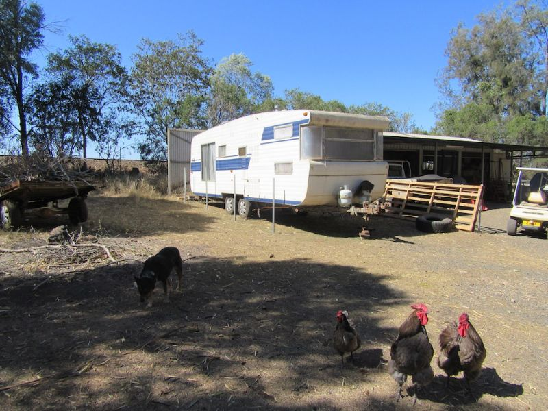 Free Accommodation For Working Backpackers In Exchange For Hobby Farm Help, No Paid Work