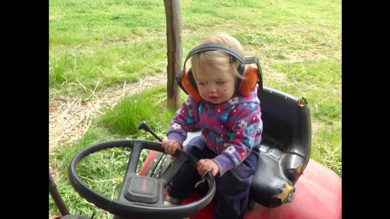 Home Help And Garden Work