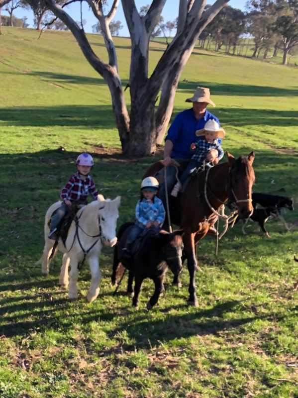 Au Pair Required On Beautiful Rural Property In Nsw - Immediate Start