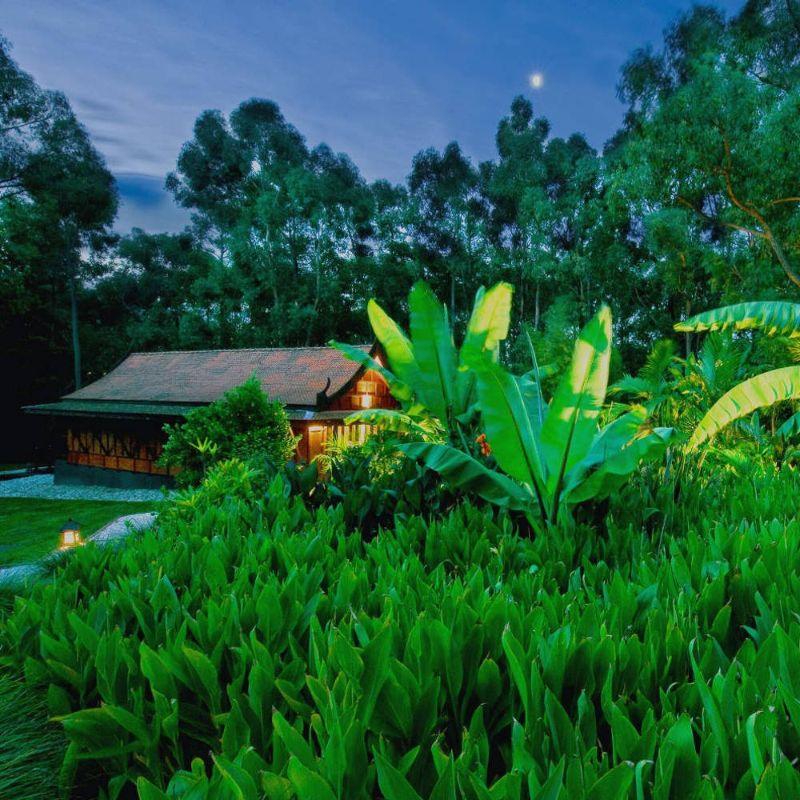 Gardener/maintenance Person