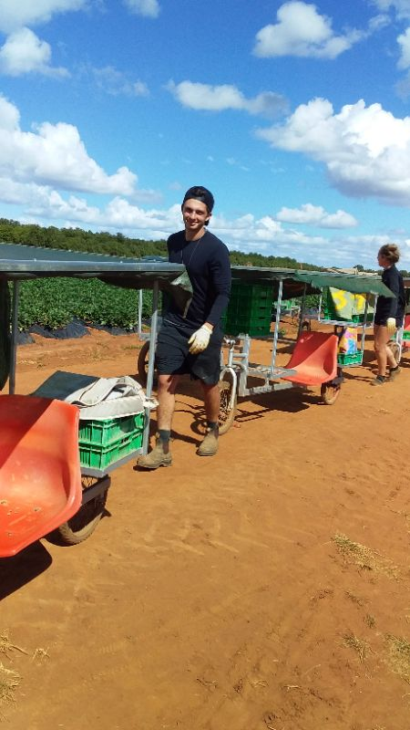 Farm Work / 2nd And 3rd Year Visas