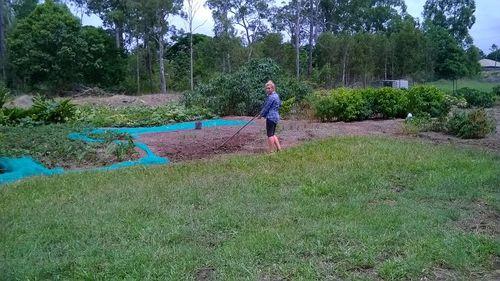 Plant Nursery / Organic Farm