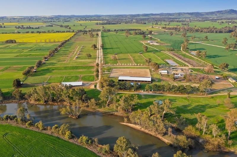 Farm Hand @ Horse Property
