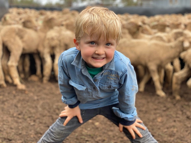 Great Rural Au Pair/farmhand Role With Visa Sign Off