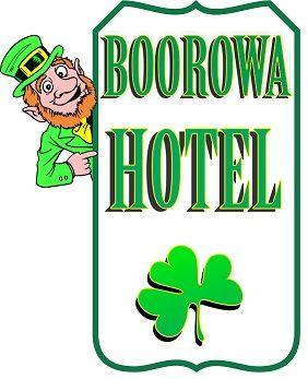 Bar Person In Irish Hotel