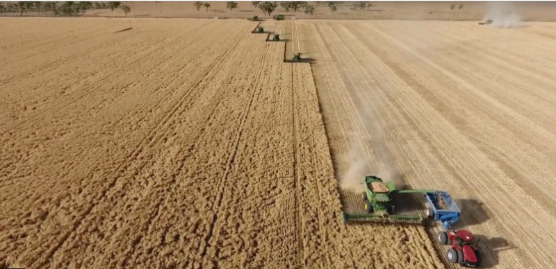 2020 Grain Harvest - Header, Tractor And Truck Drivers
