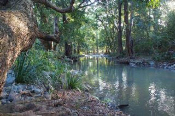 Spiritual Off Grid Permaculture, Sunshine Coast Hinterland