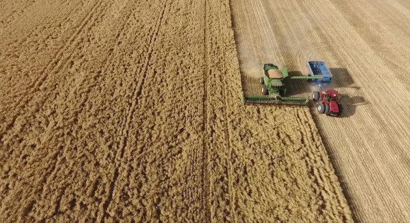 2020 Grain Harvest - Header - Chaser Bin - Truck Driver Positions - October Start