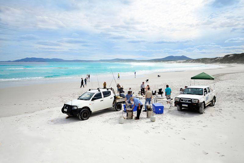 Summer Tavern Job By The Beach