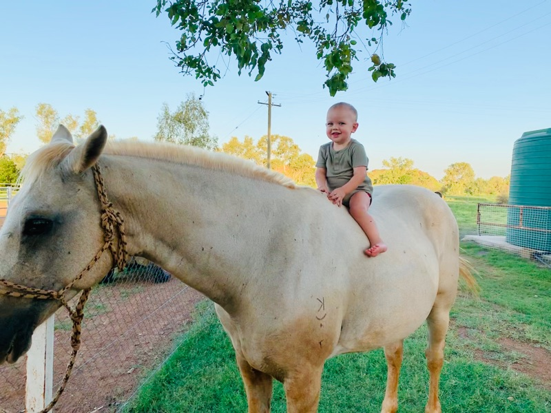 Au Pair Couple Or Single For Little Boys On Rural Property With Horses, Dogs & Chickens