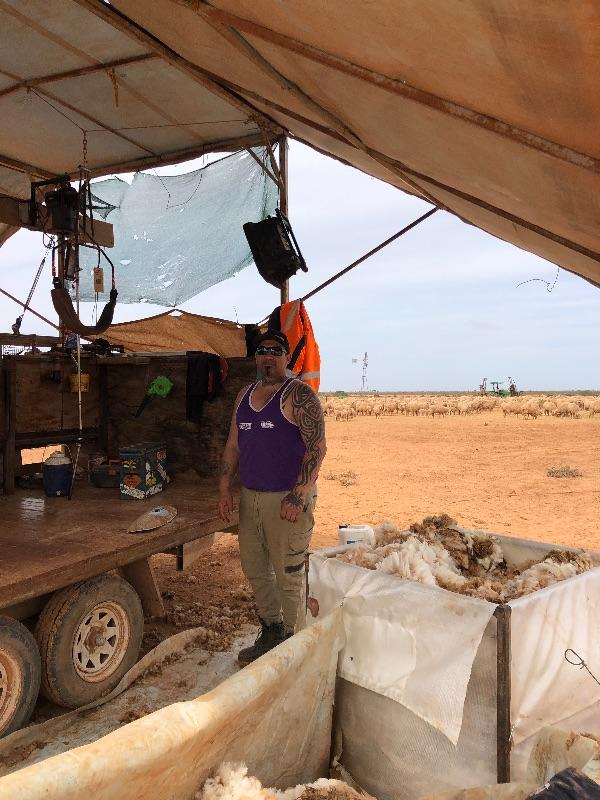 Sheep Station / Nullarbor Plain / 4 -6 Weeks Work