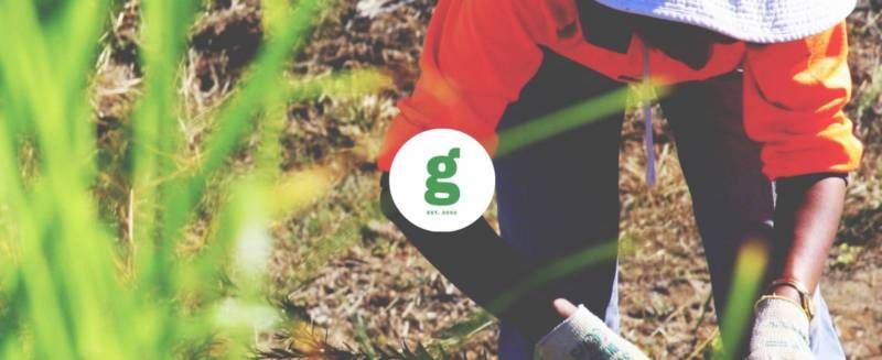 Casual Landscaper Labourers Required - Sydney And Surrounds