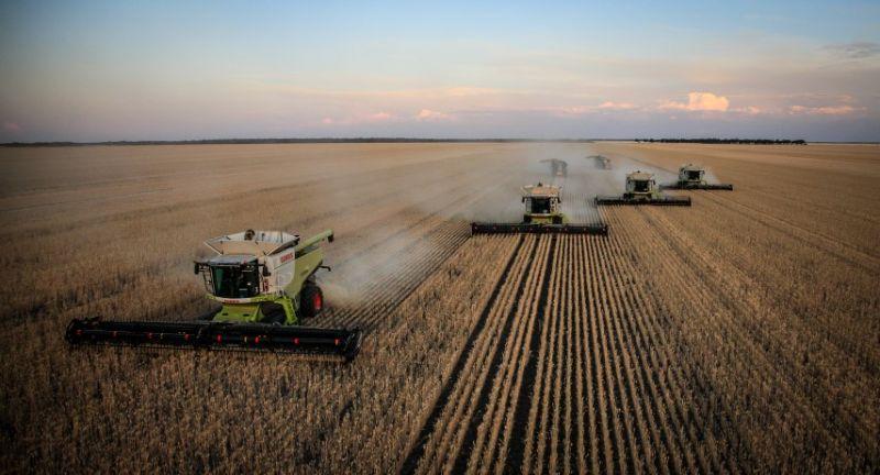 Tractor Driver / Maintenance Help / Shed Coordinator For Harvest Team