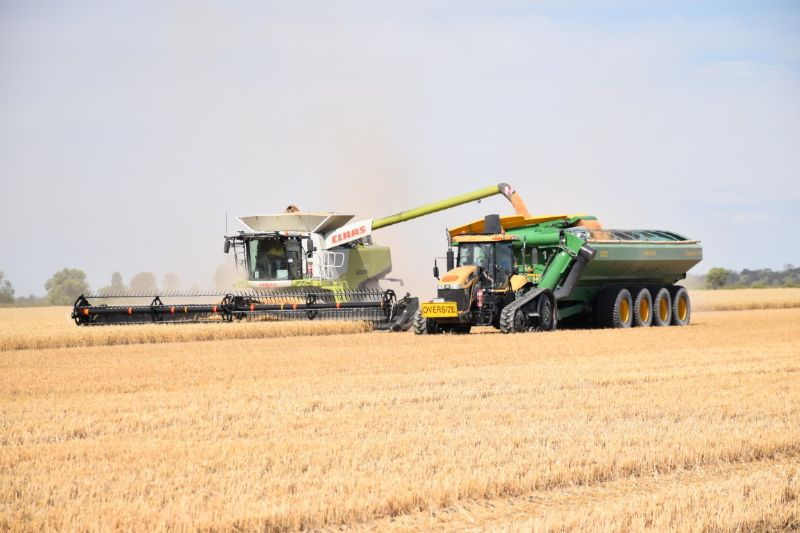 Tractor Driver / Maintenance Help / Shed Coordinator For Harvest Team