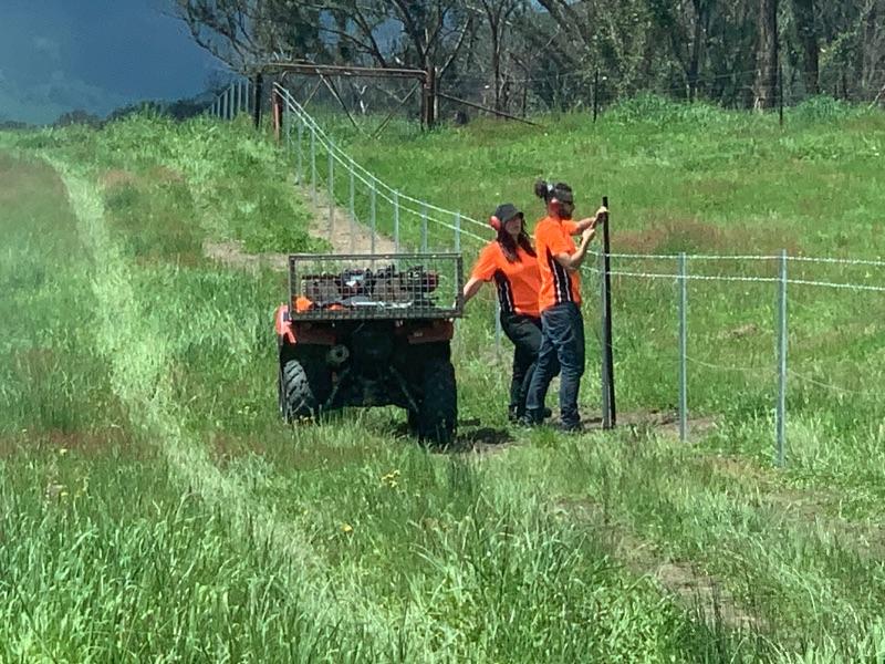 Farm Fencing Bushfire Area Volunteer 88days