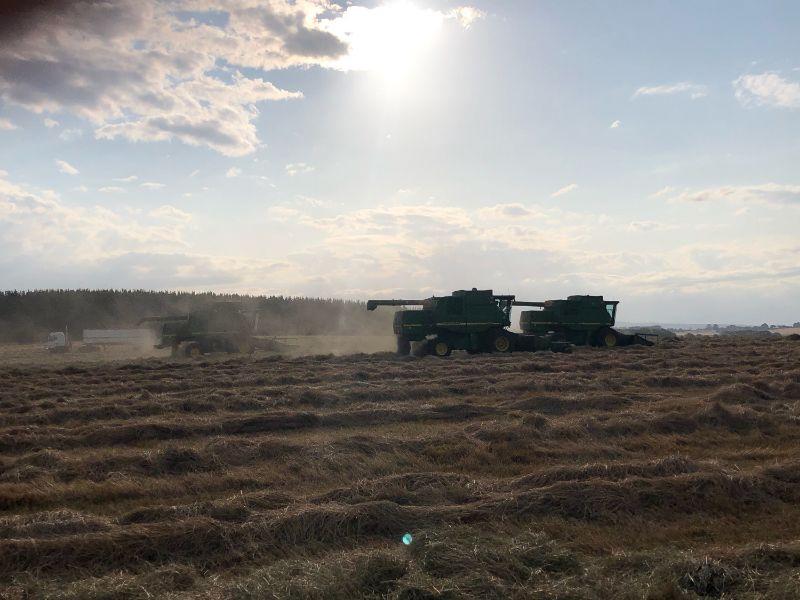 Harvest Plant Operators