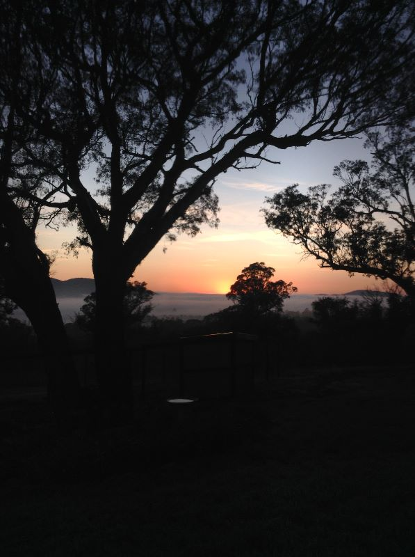 Experienced Host Family Start 11 January 2021 - Live In Au Pair/nanny (farm Work If Needed)