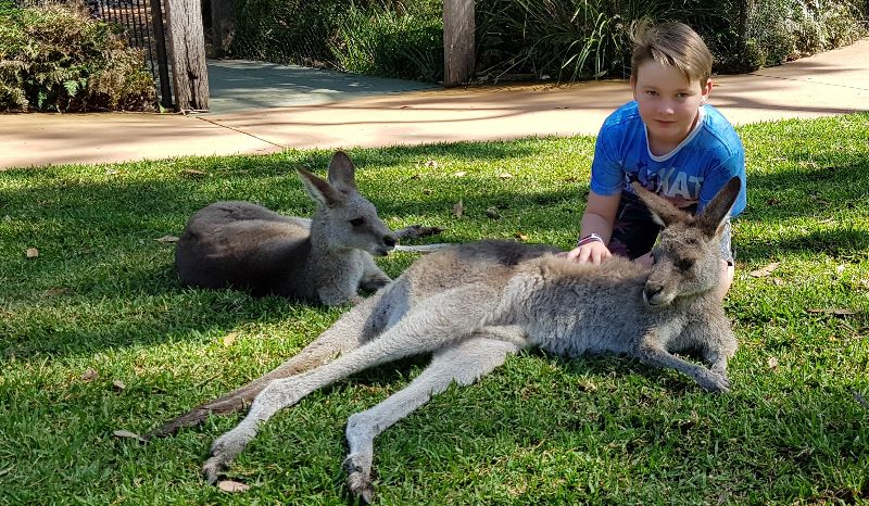 Aupair Required For 10 Yo Boy With Fun Family - Start In January