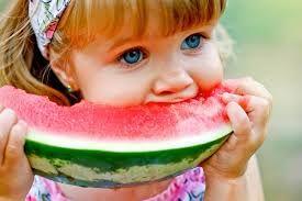 Watermelon And Pumpkin Picking