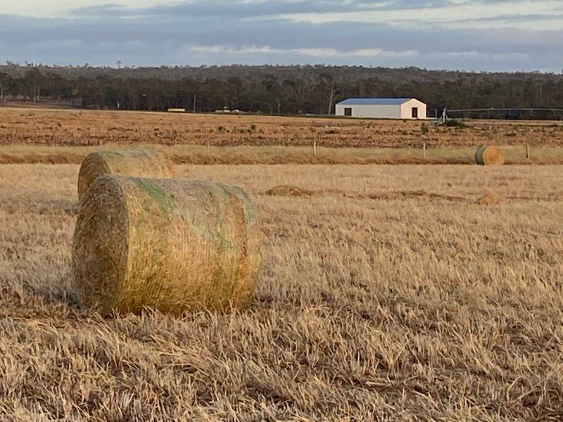 Welder For Cattle Station