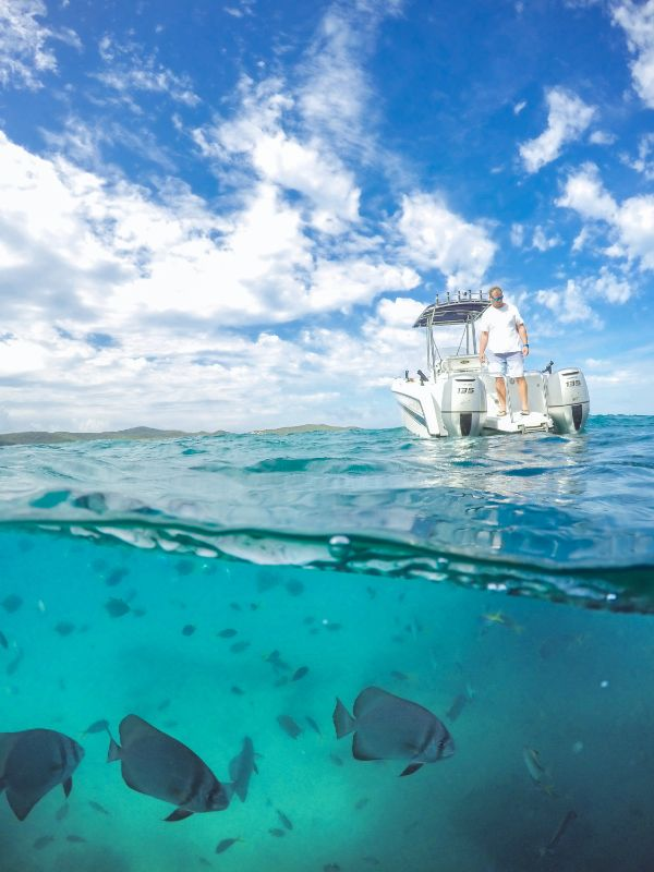 Helpers Required On Pumpkin Island, Southern Great Barrier Reef