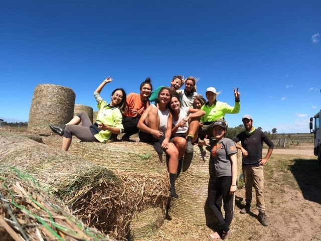 Farm Work For Backpackers