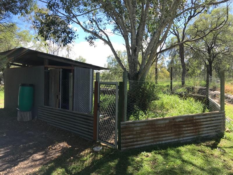 Relaxing Aussie Farm Cultural Exchange