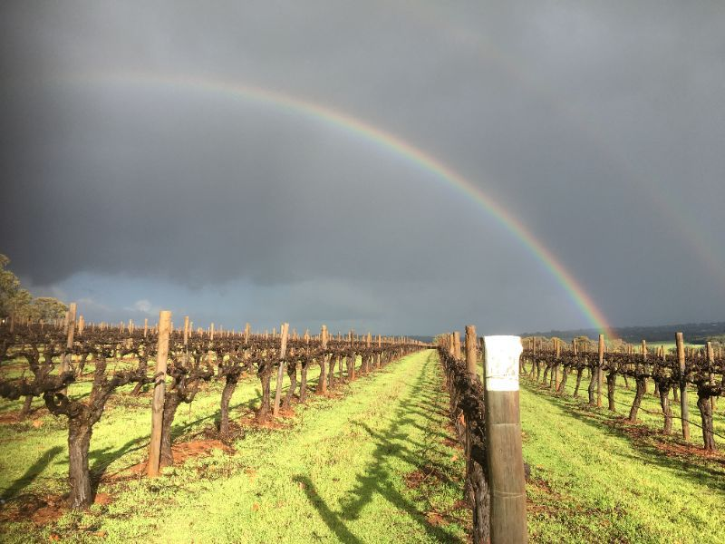 Vineyard Pruners Required