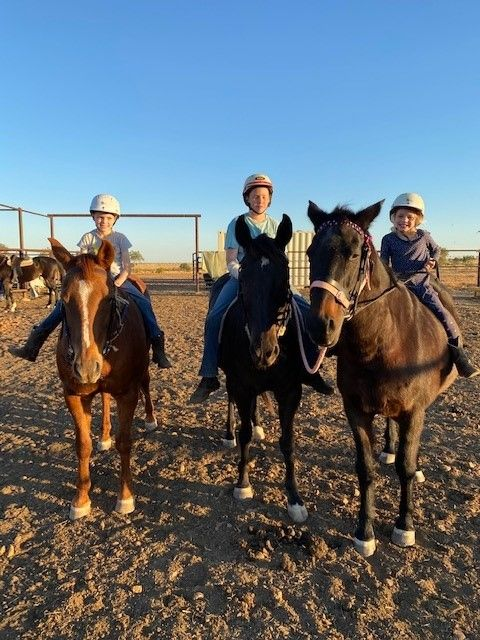 Au Pair Needed On Family Owned Cattle Station.own Accomodation.start Late June 2021
