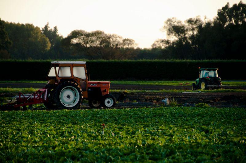 Casual Farm Produce Worker